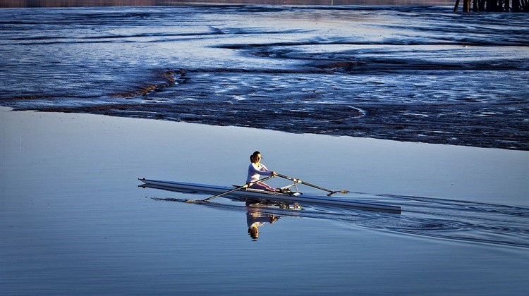 Rower on the Tamar River