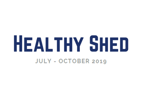 Healthy Shed.png