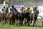 Launceston Cup 2.jpg